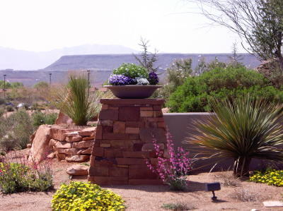 Southwest Flower Garden