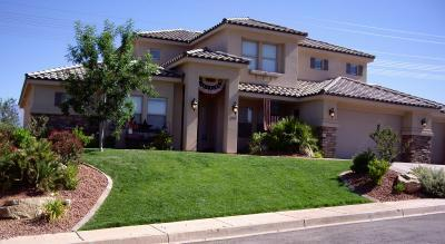 Front yard with grass on a slope