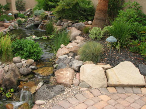 beautiful water garden landscaping