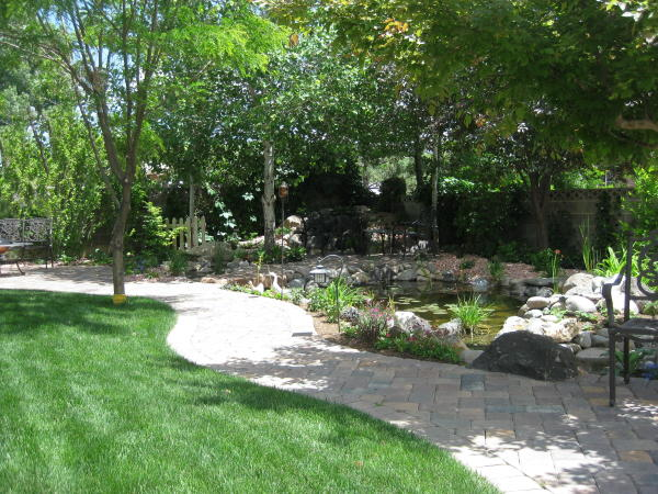 secluded pond landscaping