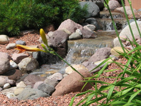 small creek waterfeature under a pine tree