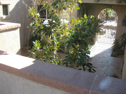 private courtyard wall