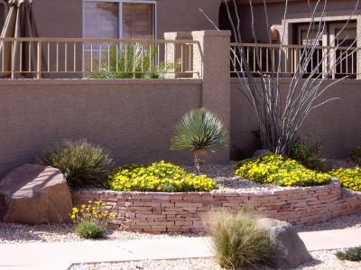 desert flower garden