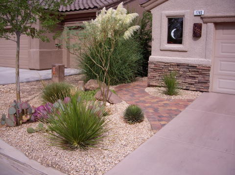variety of landscaping bushes